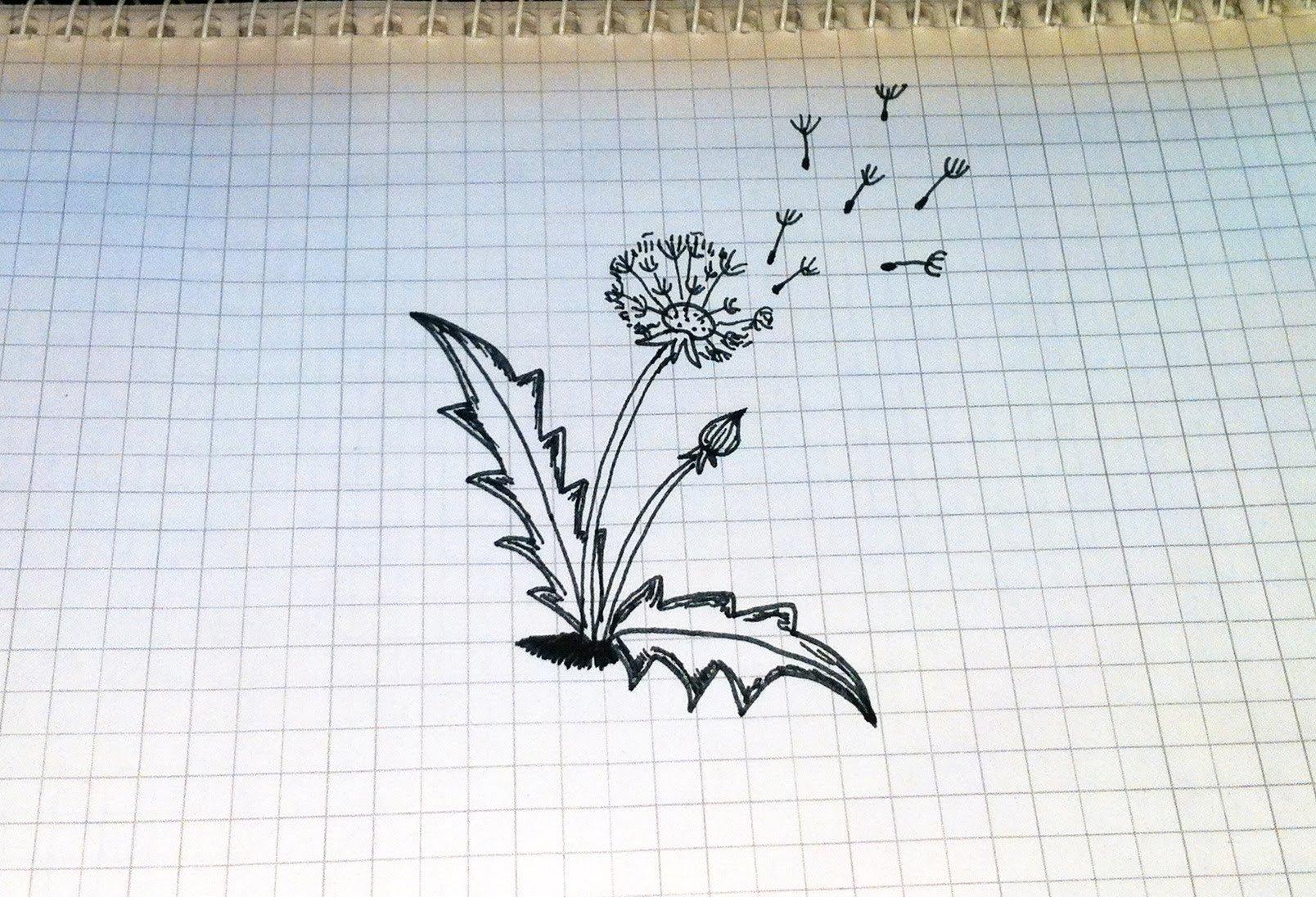 Простые рисунки ручкой в тетради для начинающих