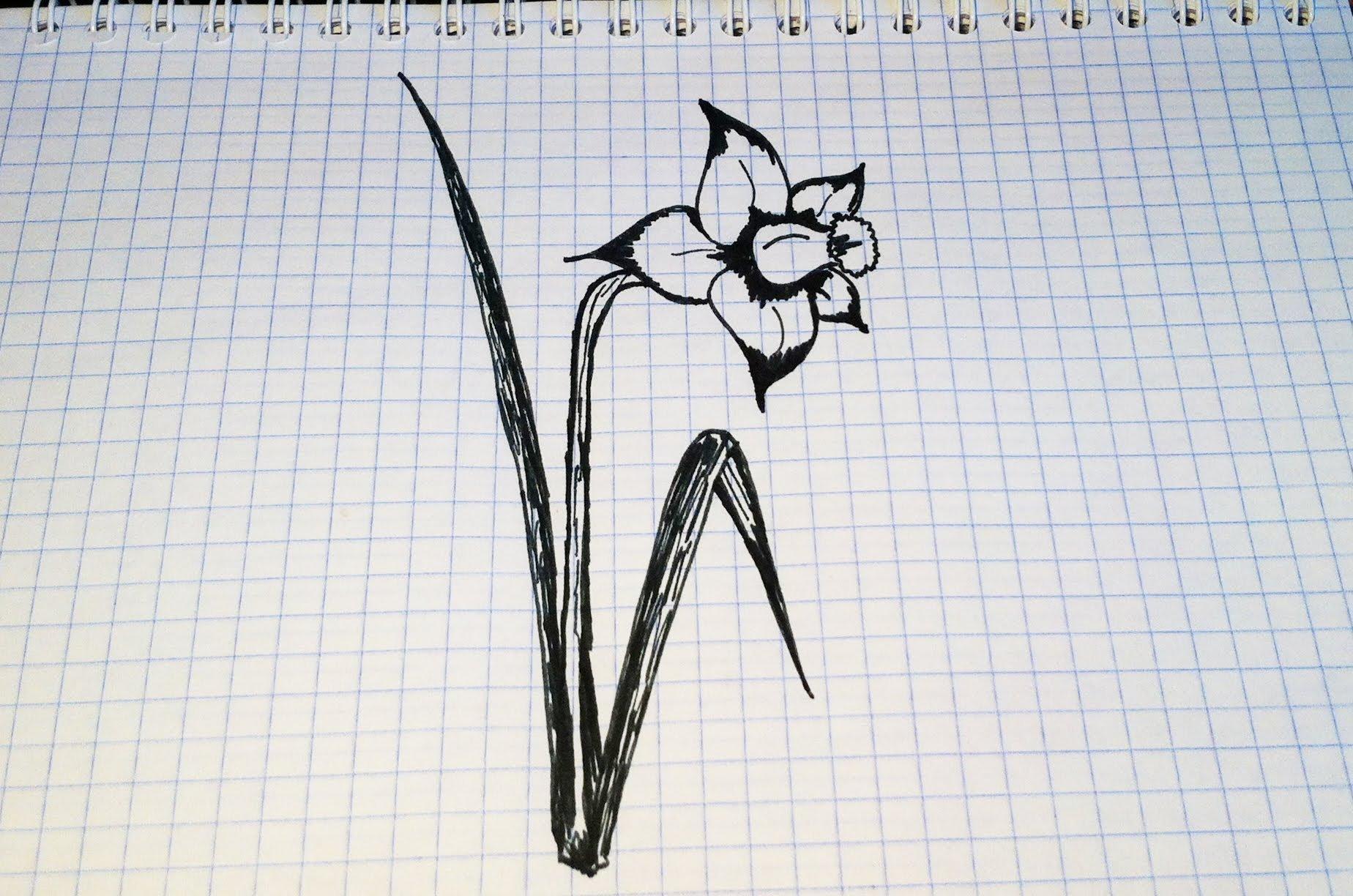 Картинки рисуем ручкой
