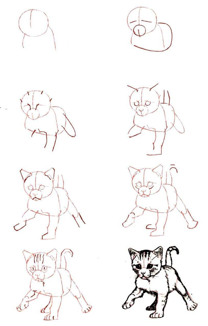 Рисунки смешной котик карандашом для начинающих, ретро открытки