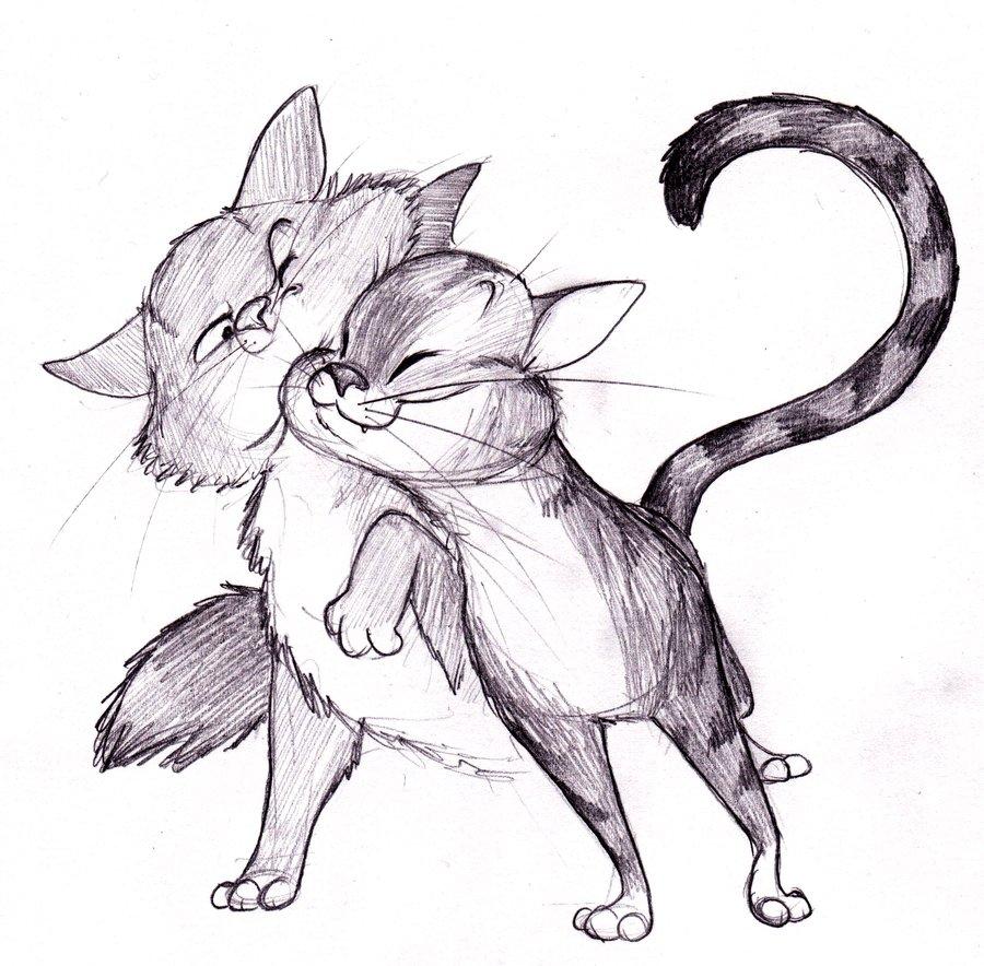 Днем, картинки карандашом смешные кошки