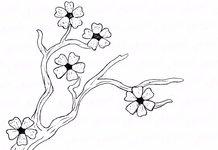 Очень лёгкие рисунки карандашом