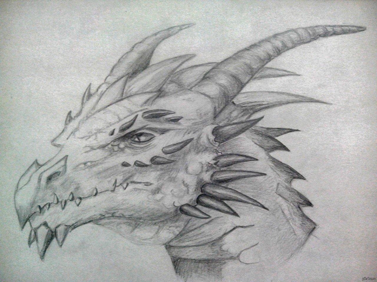 Крутые рисунки драконов простым карандашом, мультфильмы