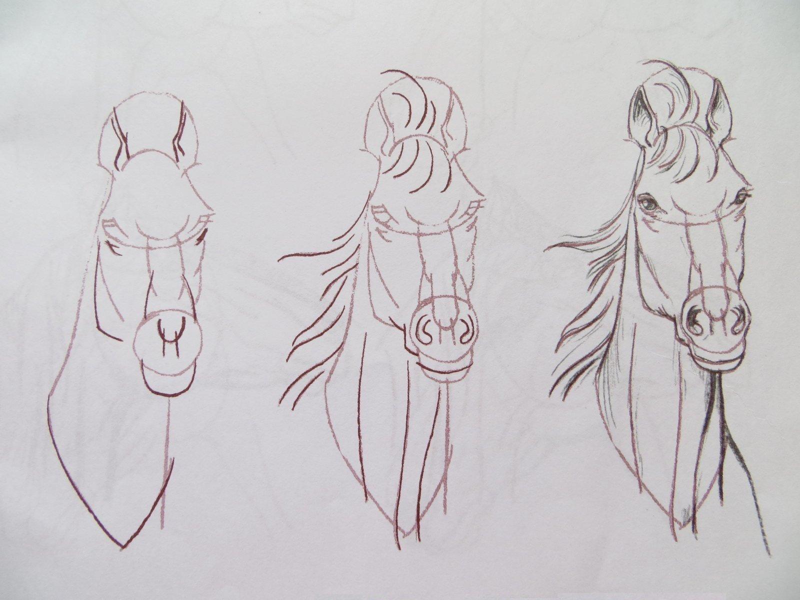 Рисунки для срисовки легкие и красивые картинки для начинающих поэтапно, пожелания любимому мужчине