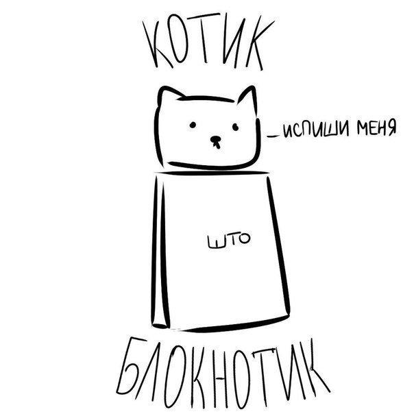 Котик блокнотик