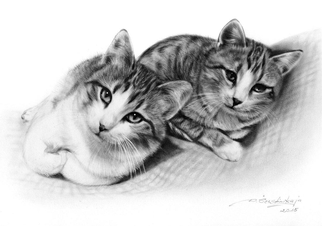 Влюбленные котики картинки нарисованные карандашом, картинки про автоледи