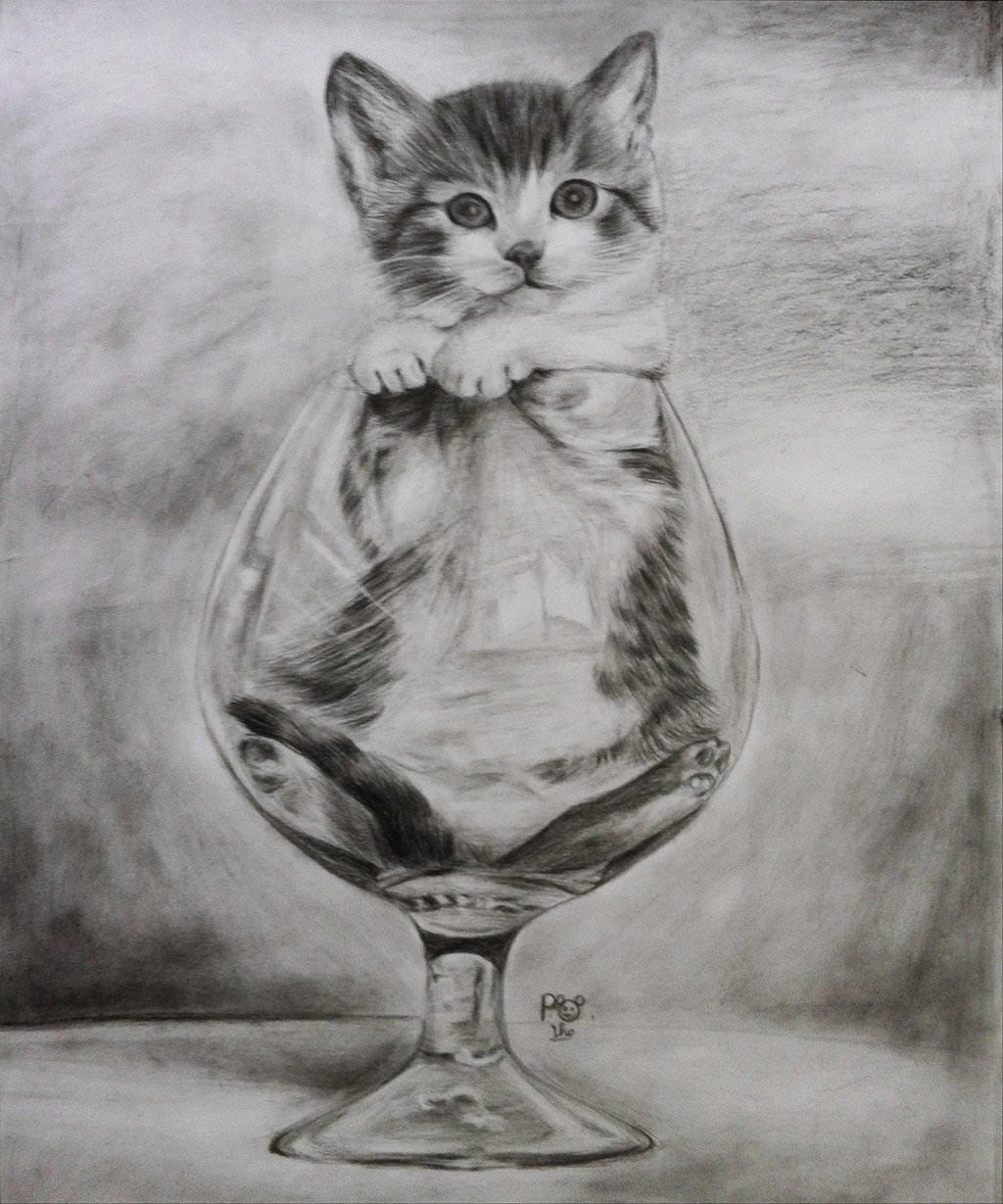 Коты простым карандашом картинки