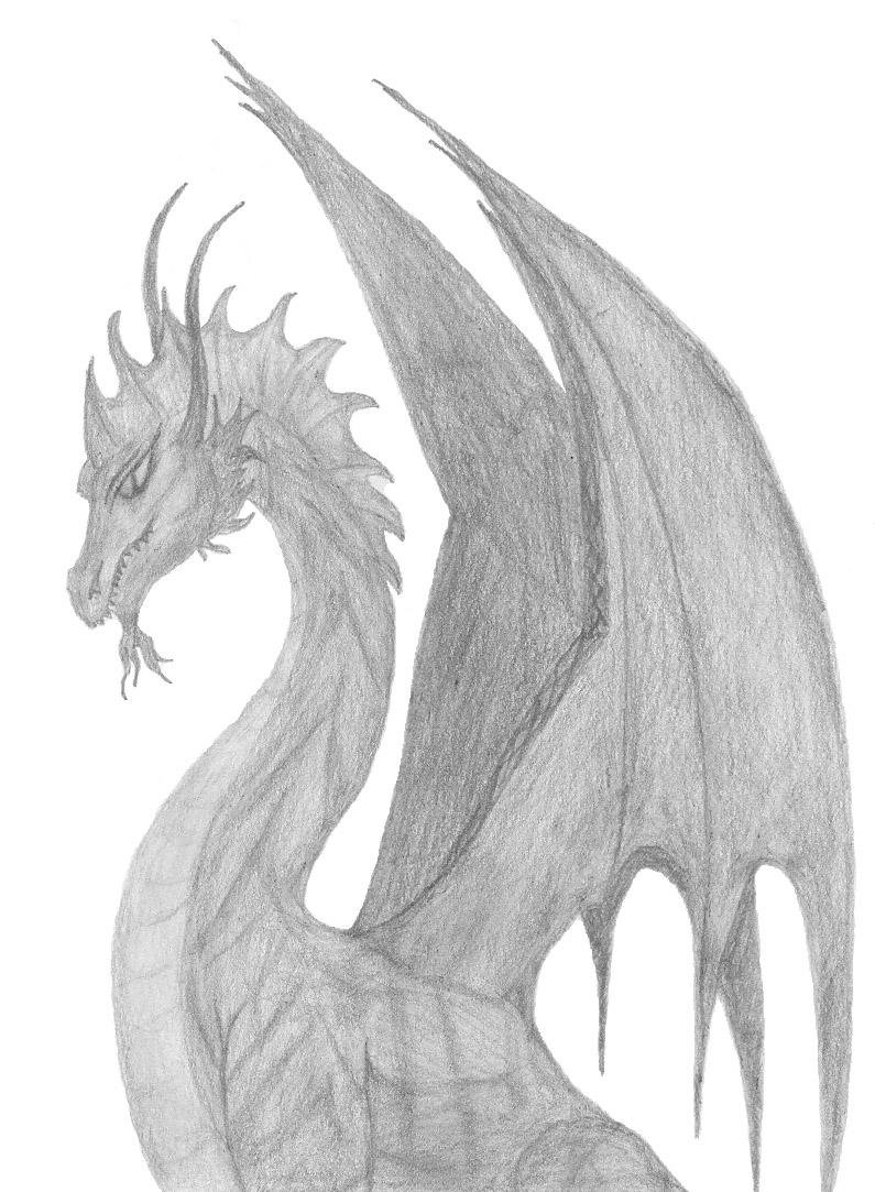 вам снова картинки драконы простым карандашом береговой