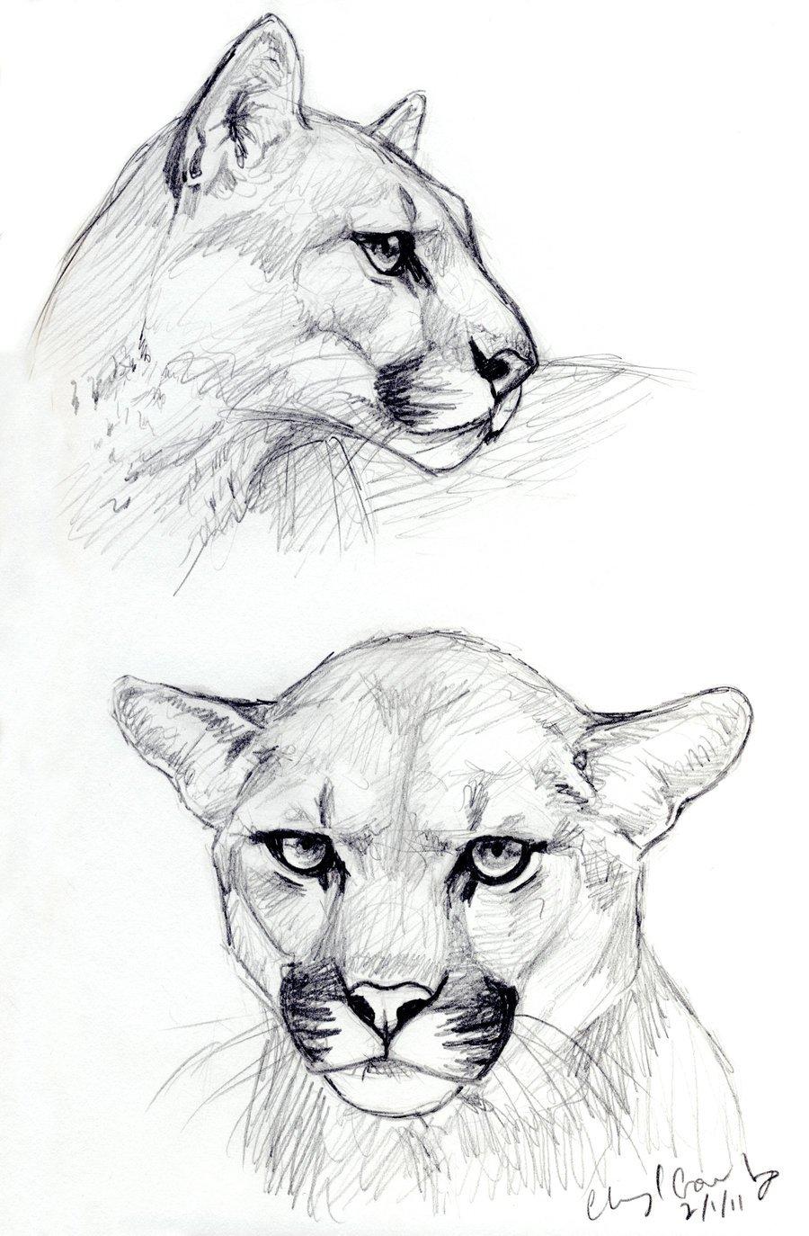 Крутые рисунки чтобы срисовать, открытки