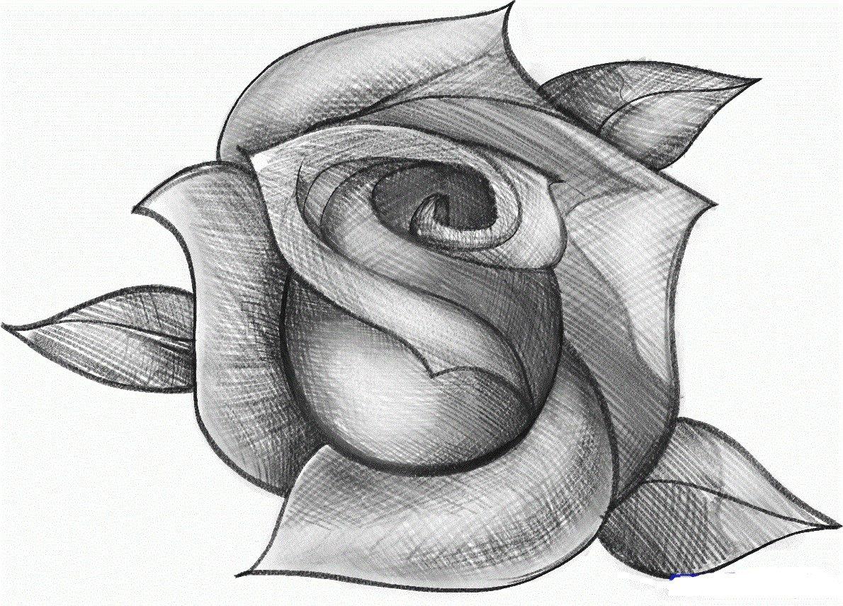Картинка чтобы нарисовать