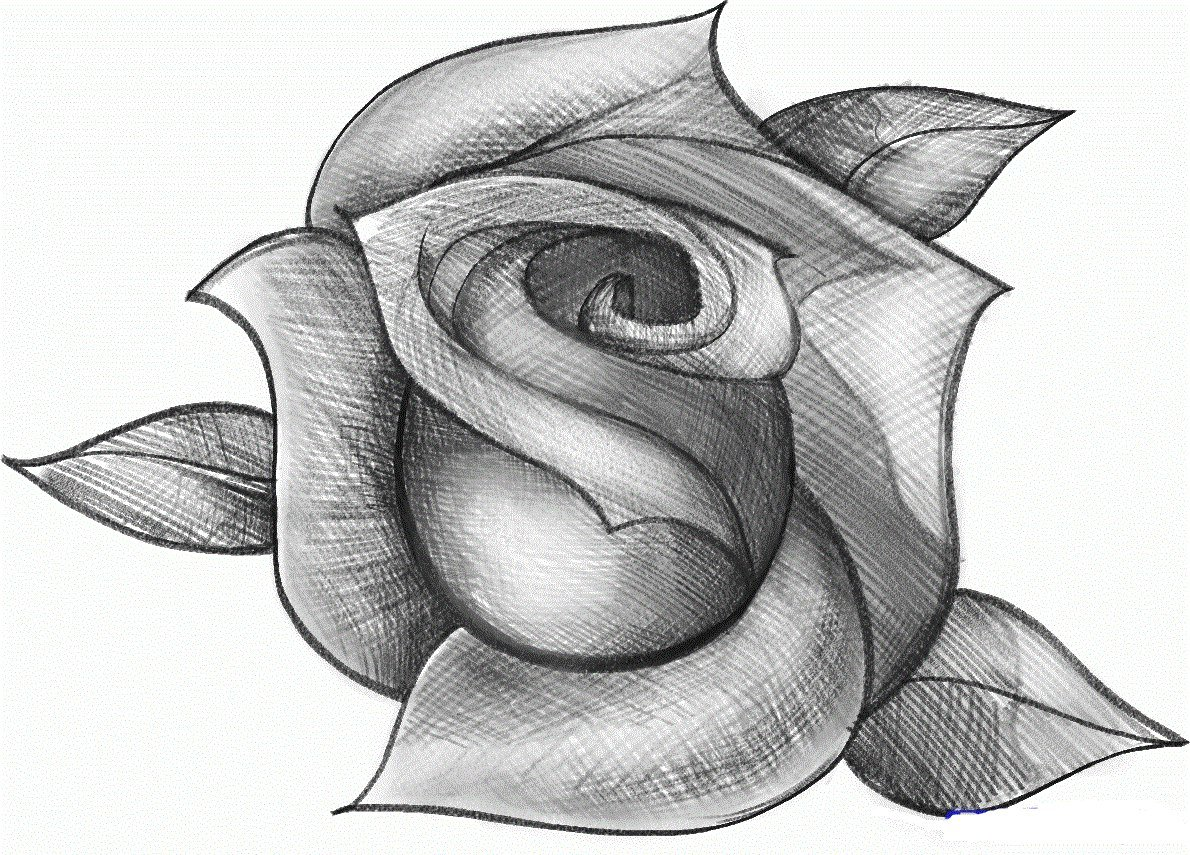 Рисунки рисовать картинки