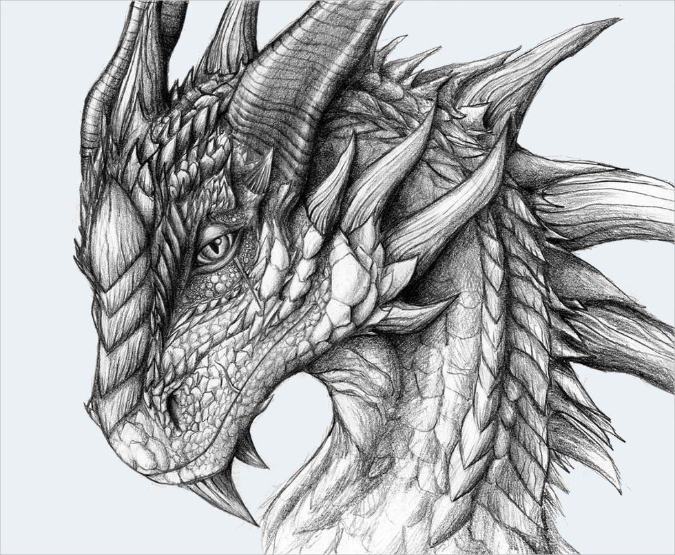 модели, драконы картинки карандашом не сложные абитуриентам