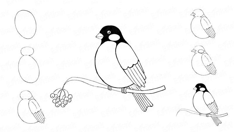 Рисунки карандашом для начинающих для девочек