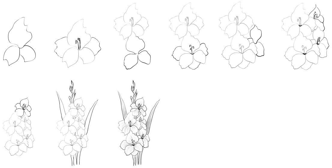 Картинки карандашом цветы поэтапно карандашом