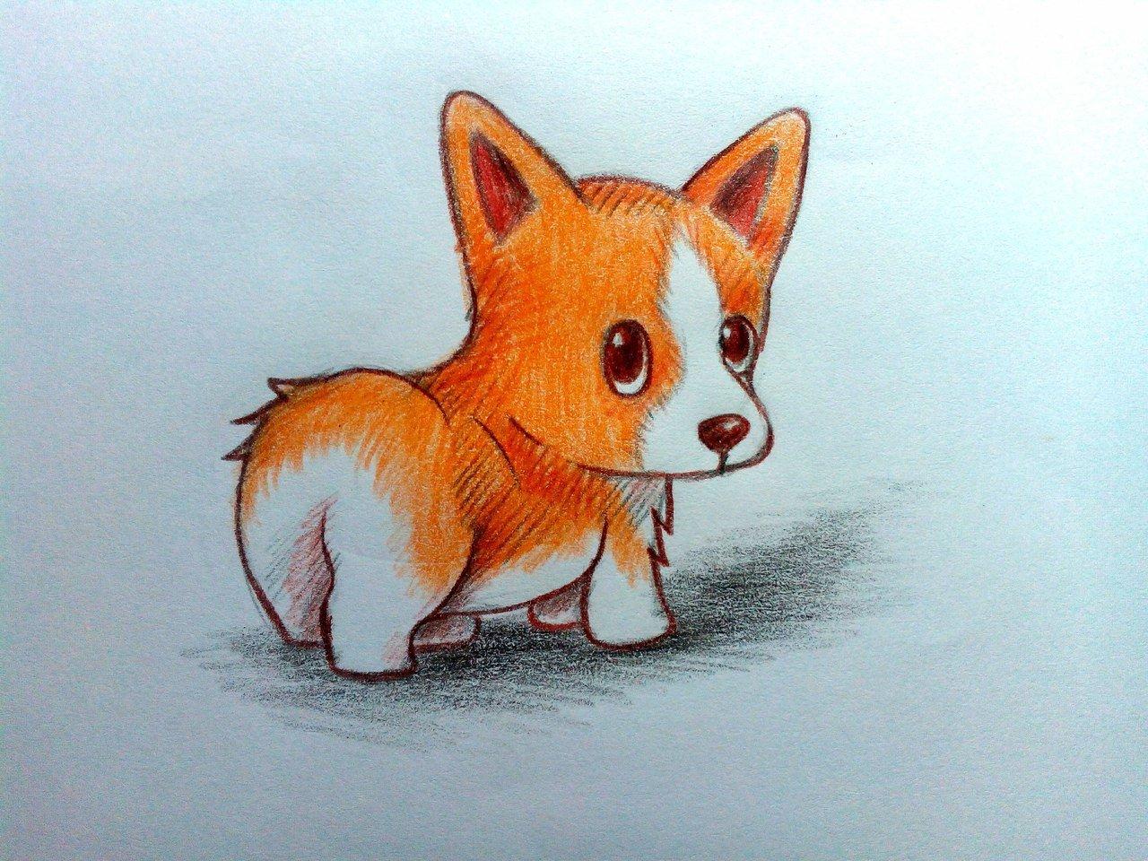 Картинки зверюшки карандашом