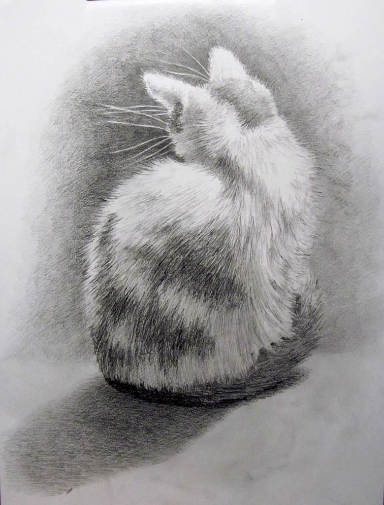 смену котята картинки рисовать карандашом нужно
