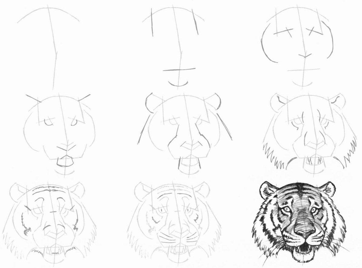 Рисовать рисунки карандашом поэтапно