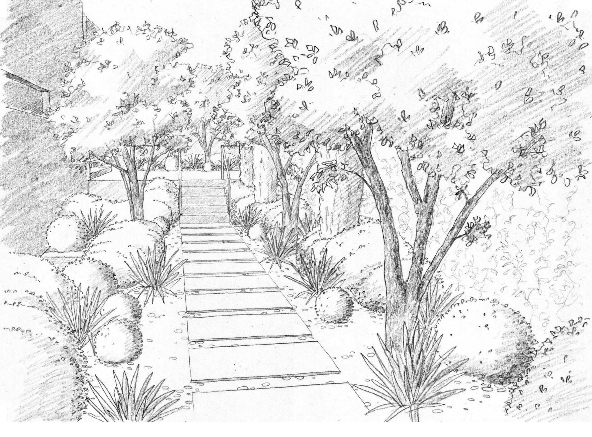 картинки для рисования в саду карандашом будет