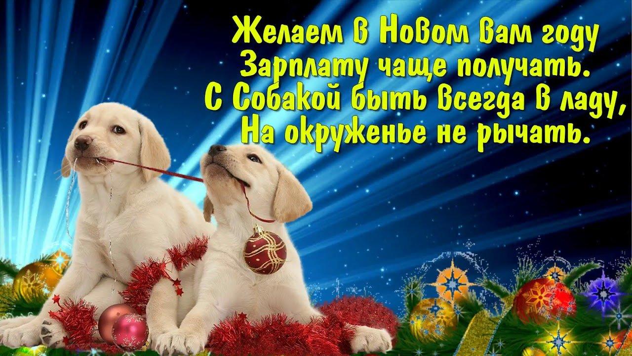 горы поздравление любимой собаке с новым годом отвечающие