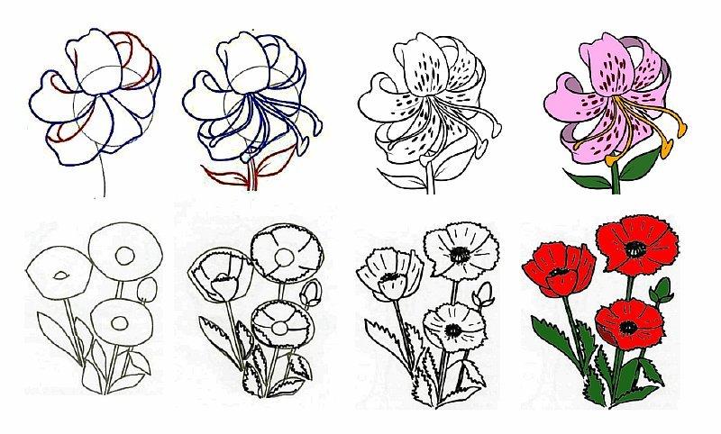 Годик, картинки поэтапно цветы