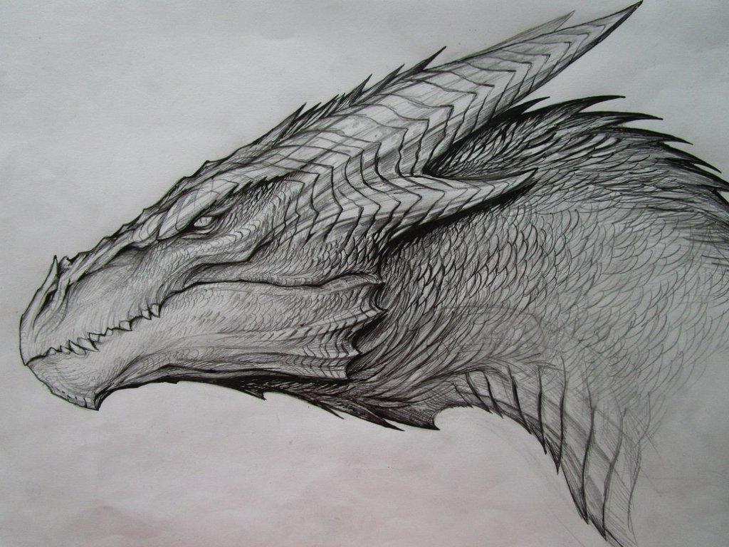 Крутые картинки дракона карандашом, году ребенку