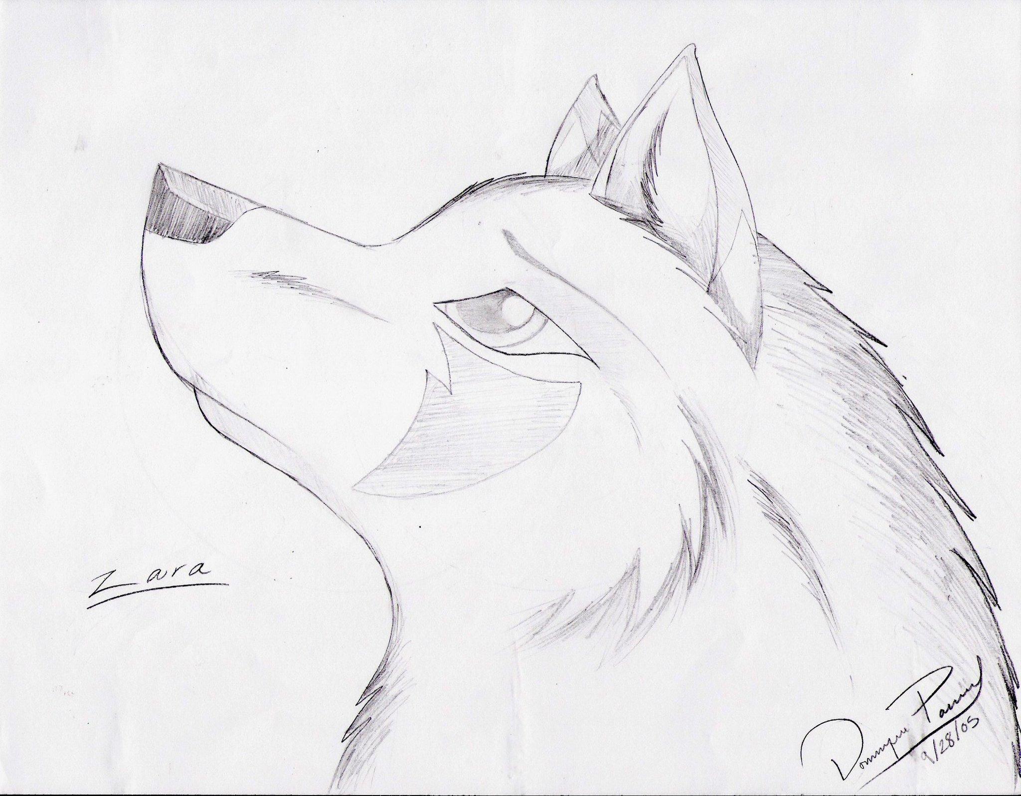 Рисунки простым карандашом волк поэтапно