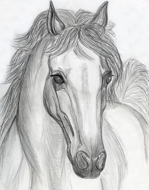 Красивые рисунки в карандаше