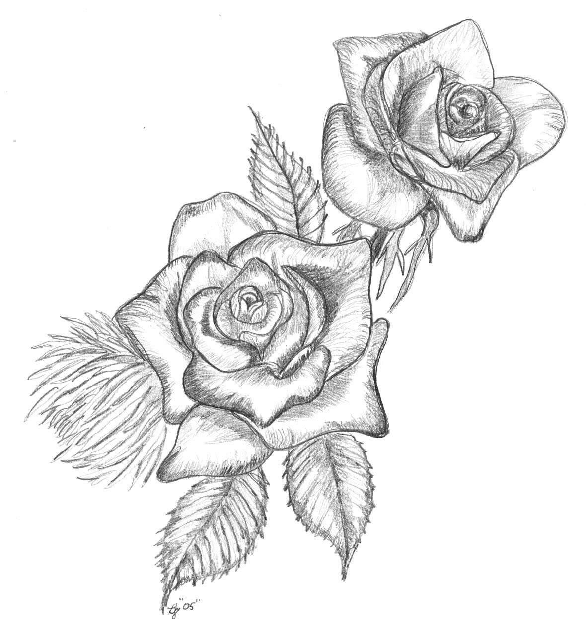 Розочка рисунки карандашом