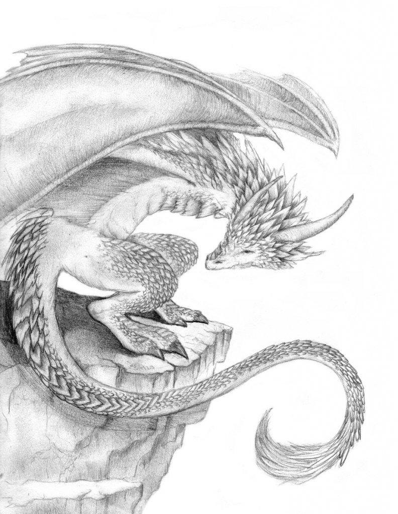 фото эскизы картинки драконов бурундук