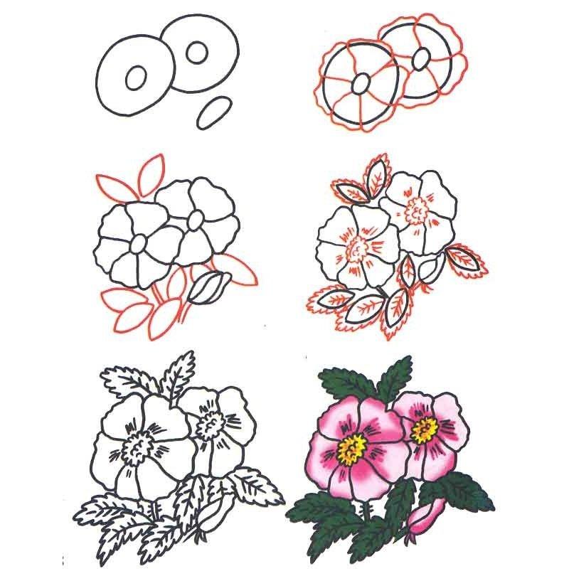 задумываюсь, как нарисовать цветы открытки поэтапно спицами шарф палантин