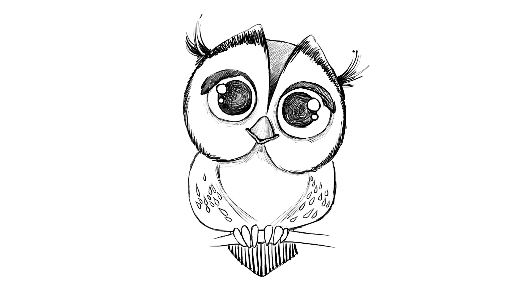 cute owl drawings - HD 2952×1654