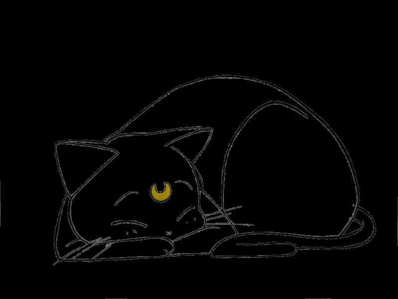 Открытка, картинки кошек рисунки для срисовки