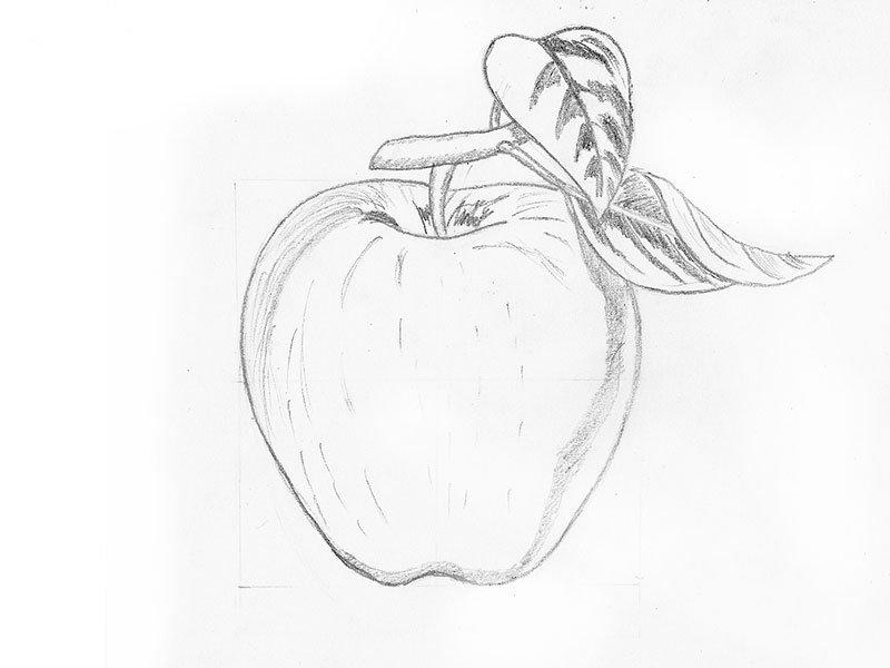 Красивые картинки для срисовки карандашом