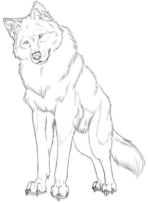 Картинка красного волка карандашом поэтапно