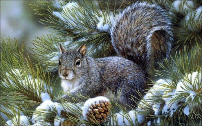 Христианские поздравления с рождеством христовым в стихах
