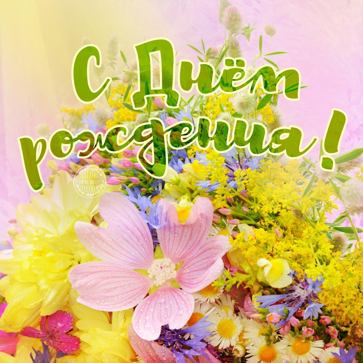 Стихи к подарку орхидея - ПоздравОк