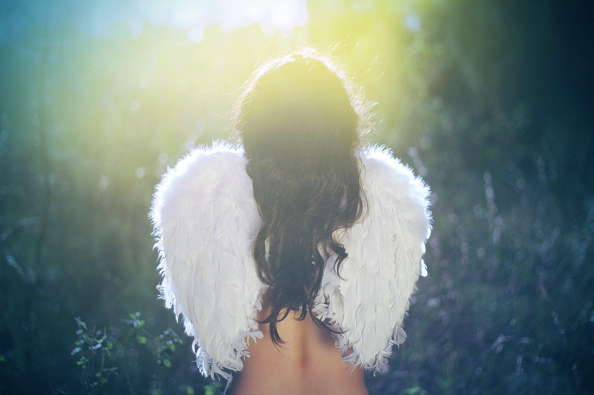 Девушка крылья картинка