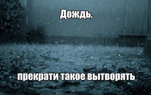говорила смешная картинка про дождь в декабре разделить щелевые
