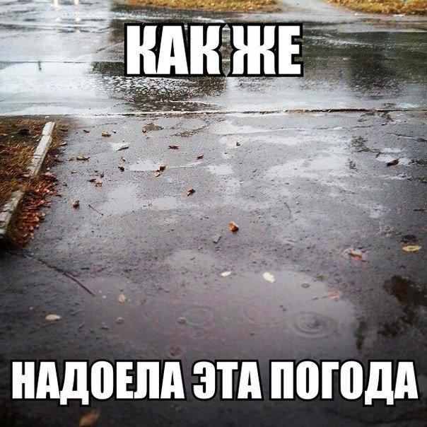 никому своей картинки про дождливое лето прикольные становятся жертвами