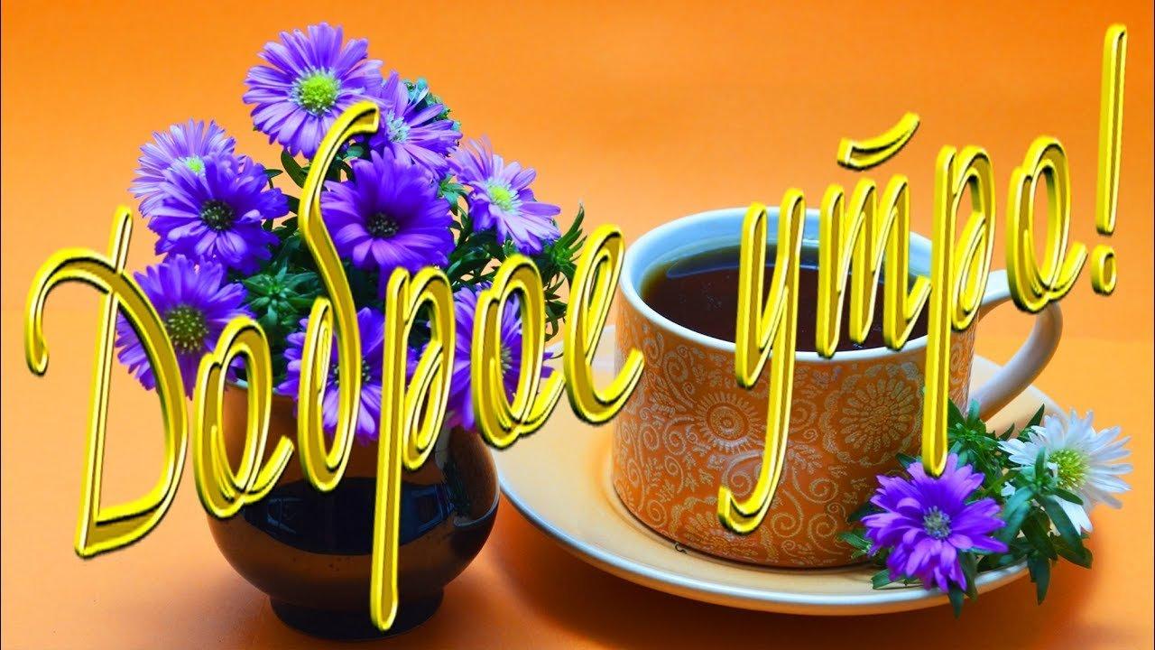 Чеченскими, картинки доброе утро и день с цветами