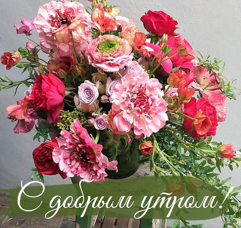 Картинки большие цветы с добрым утром