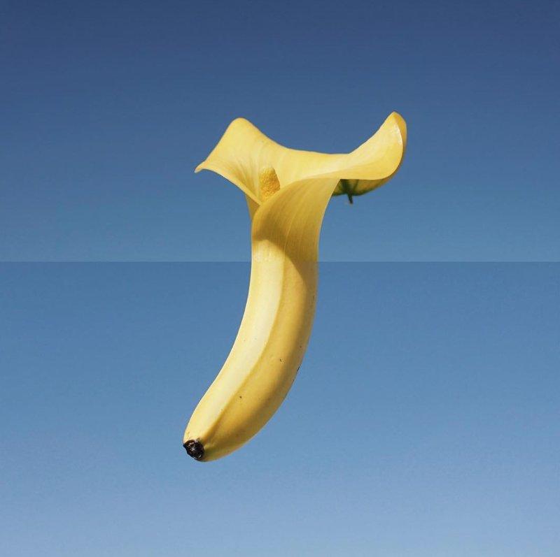 Цветок-банан