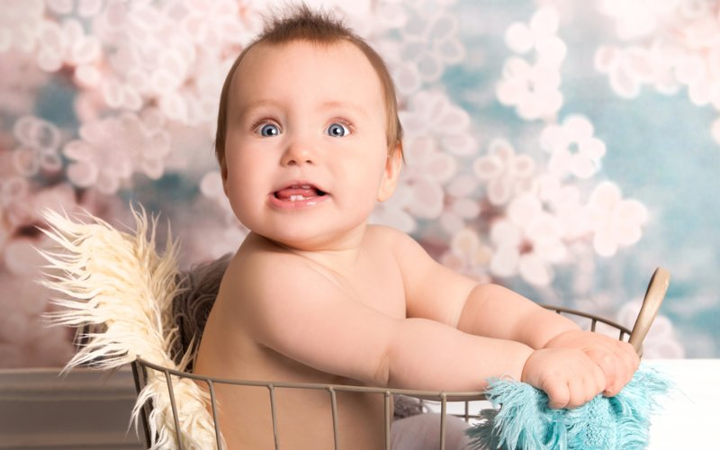 Малыш в корзинке