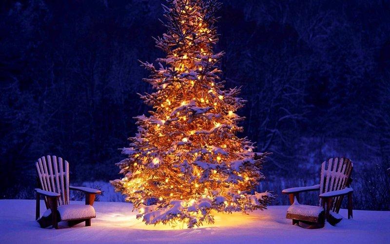 Новогодняя елка с огнями