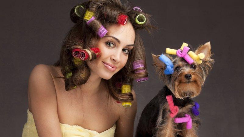 Прическа женщине и собачке