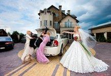 Смешные фото свадеб