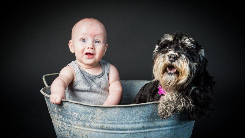 Малыш с щенком купается