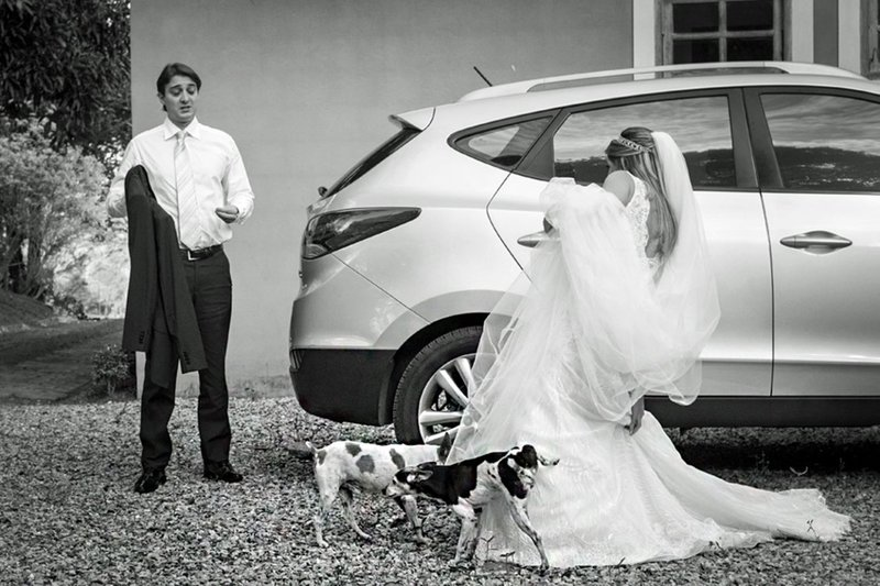 Жених с невестой и собаки