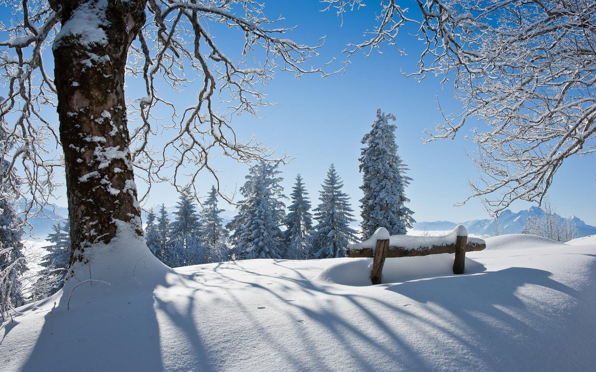 Снежная зима картинки красивые