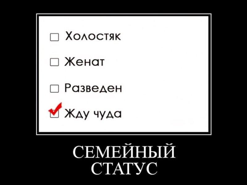"""Демотиватор """"Семейное положение"""""""