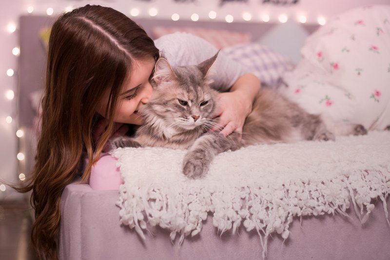 Девушка кусает котика